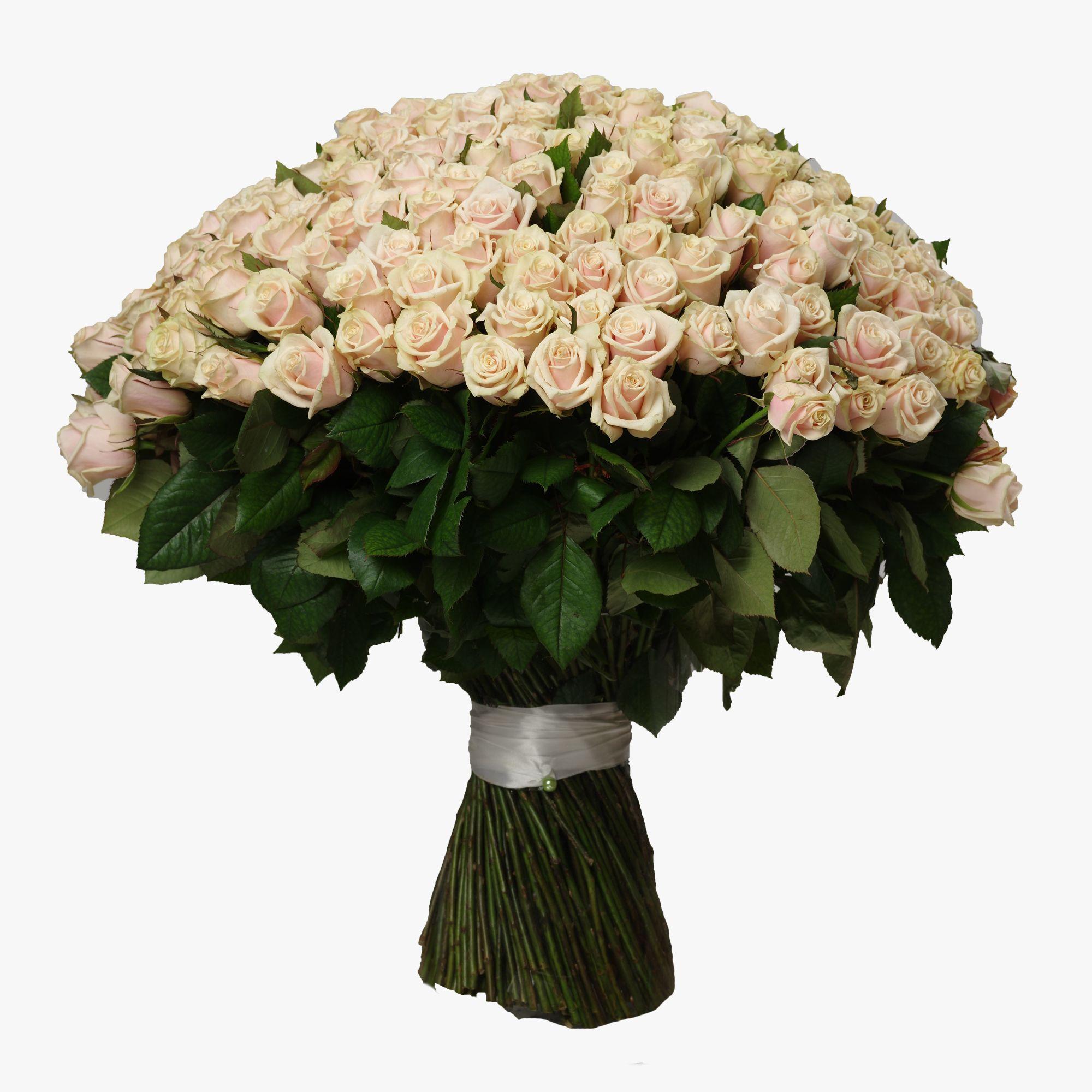 Букетов, букет из 301 розы купить недорого